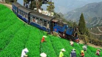 Photo of Assam:Special Measures to promote Heritage Hill Railways