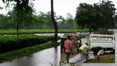 Photo of Assam: Tea garden watchman dead after flash flood hit Bokakhat