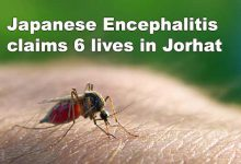 Photo of Assam: Japanese Encephalitis claims 6 lives in Jorhat
