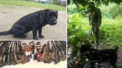 """Photo of Assam: Indian Army dog """"jaari"""" help in recovery of explosive and weapons"""